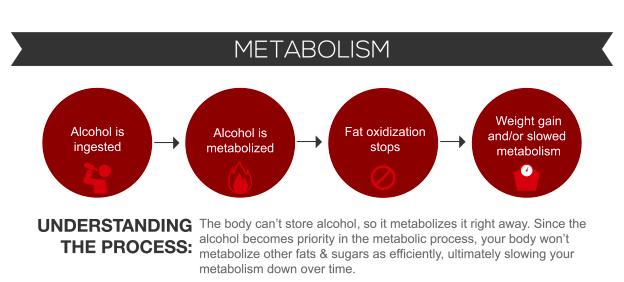 alkohol metabolism