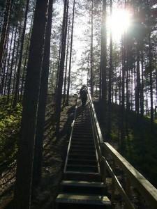 Rannametsa-Tolkuse matkarada2