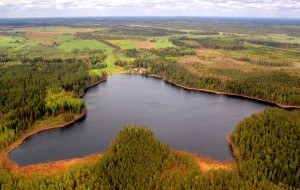 Saare järv