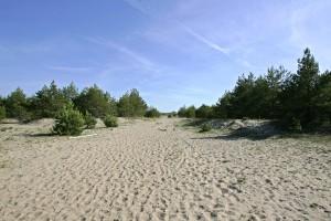 Vilsandi rahvuspark2
