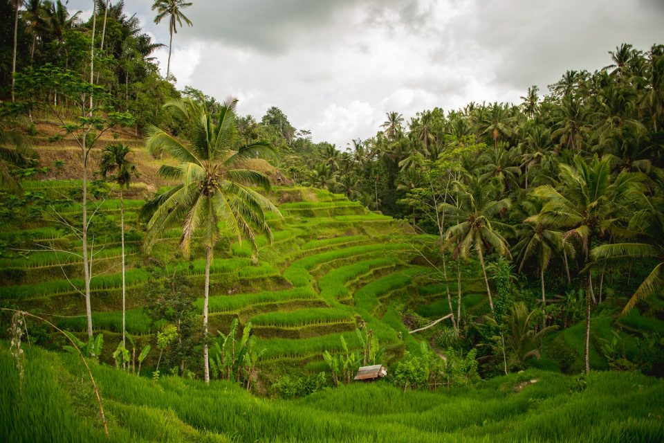 Bali saar pali reis Bali puhkus